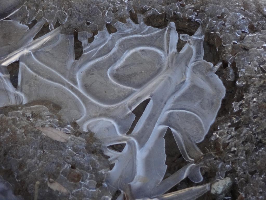 20181230氷