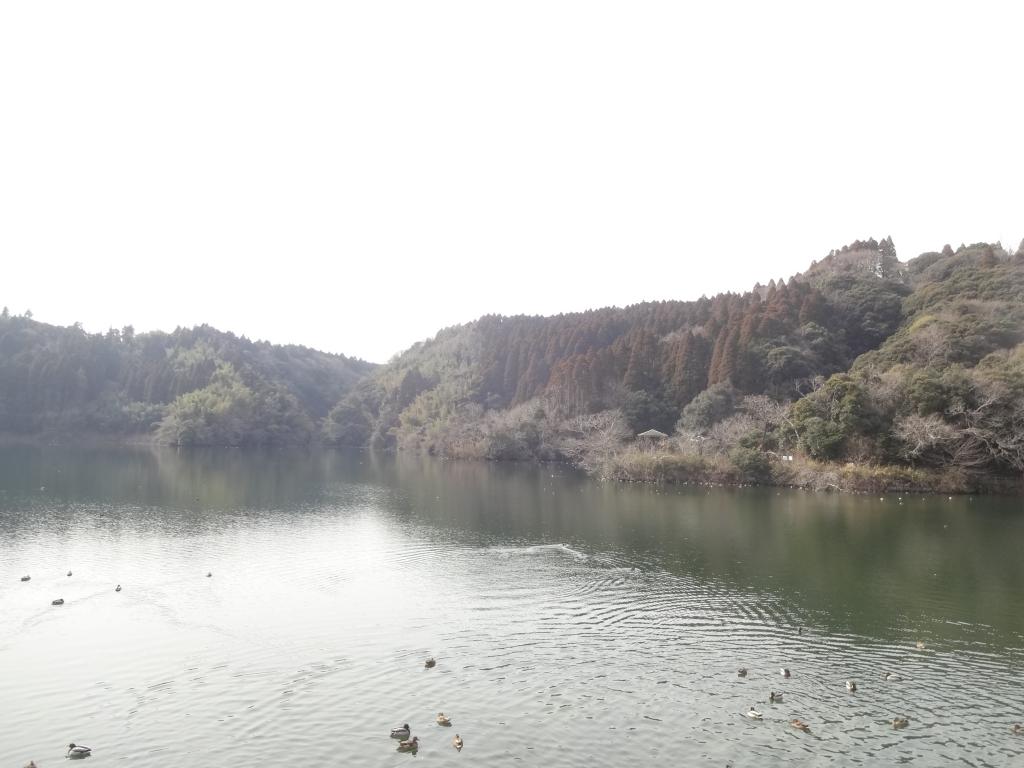 20190130小中池