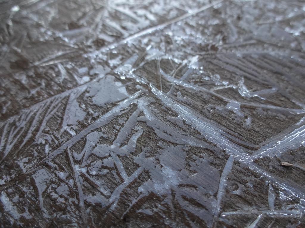 20190308氷