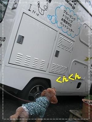 CIMG4937.JPG