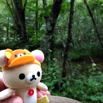 20130829 上高地を散策で森林浴