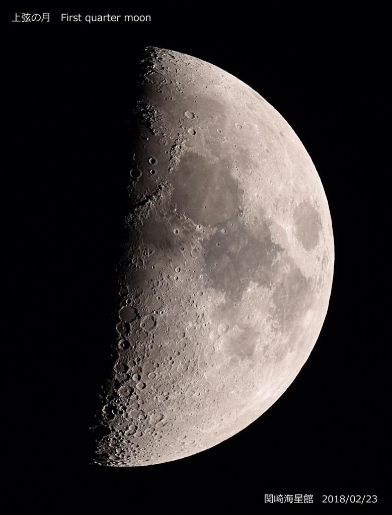 今日の上弦の月