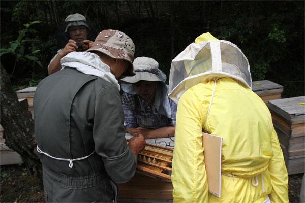 モンゴル養蜂振興事業で視察研修 JAICAF