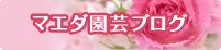 マエダ園芸ブログ