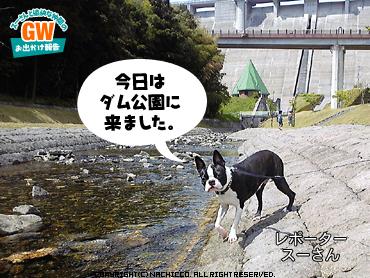 2009/05/02/dog2