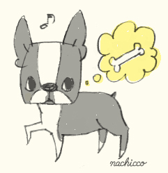 (c)nachicco