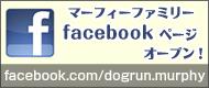 bn_fb.jpg