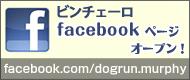 ビンチェーロFacebook