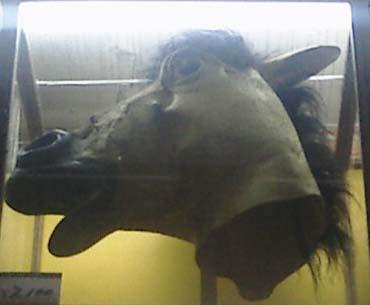 馬仮面¥2,100円