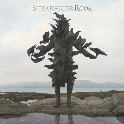 shearwater「rook」