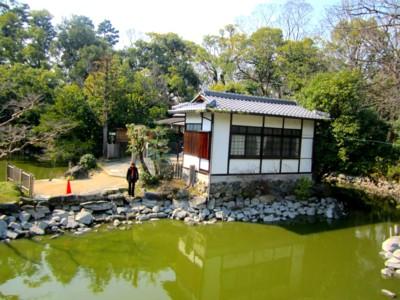 太鼓橋から見える九条池 (1).jpg