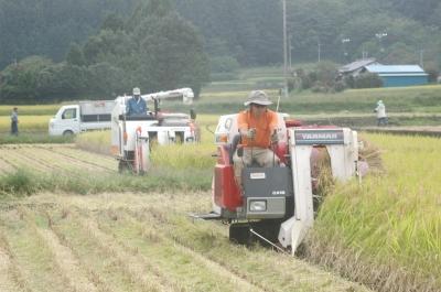 上野稲刈り