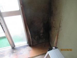 タンスの裏側で換気が悪くカビてしまった壁