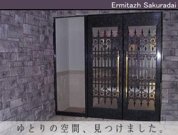 ゆったり・豪華! 桜台の新築物件!
