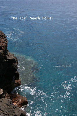hawaii55.jpg