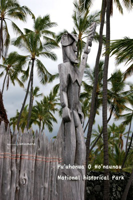 hawaii59.jpg