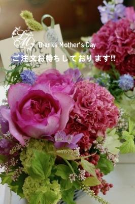 母の日ブログ用1.jpg