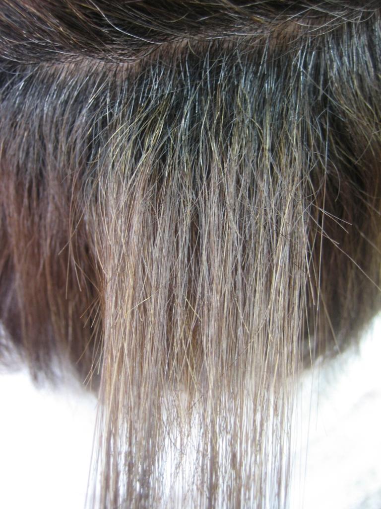 50代ヘアスタイルの常識 アラフィ不ヘアスタイルは前髪命