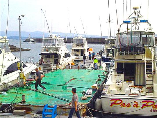 海開きと釣り大会。