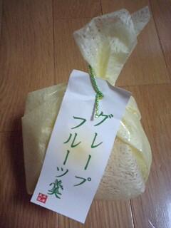 グレープフルーツ羹