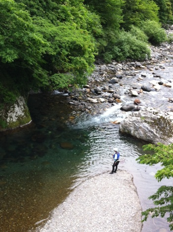 鮎の友釣り_1.JPG