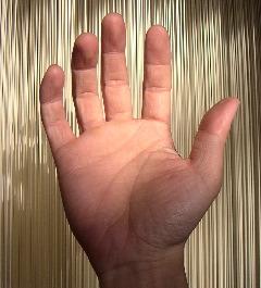 誠実、感謝。の手。