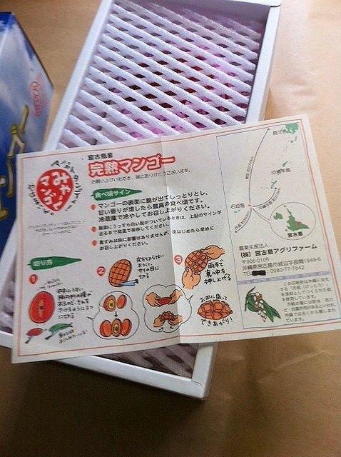 マンゴーの食べ方ガイド
