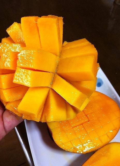 マンゴーは格子状