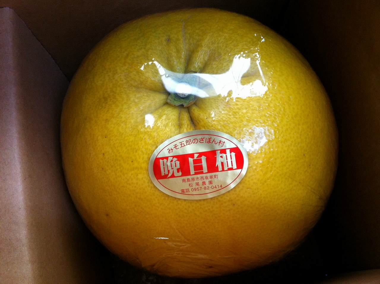 ばんぺいゆ(晩白柚)は柑橘類の王様です。