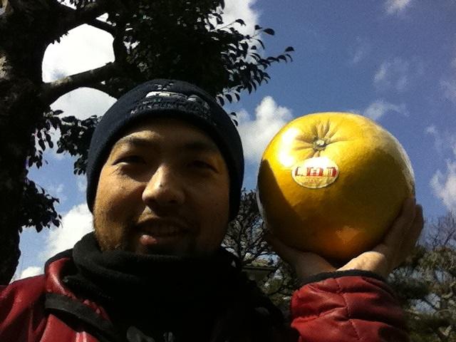 ばんぺいゆ(晩白柚)はザボンの一種です。