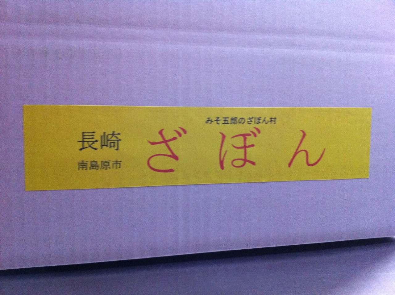 松尾農園のざぼん(晩白柚)