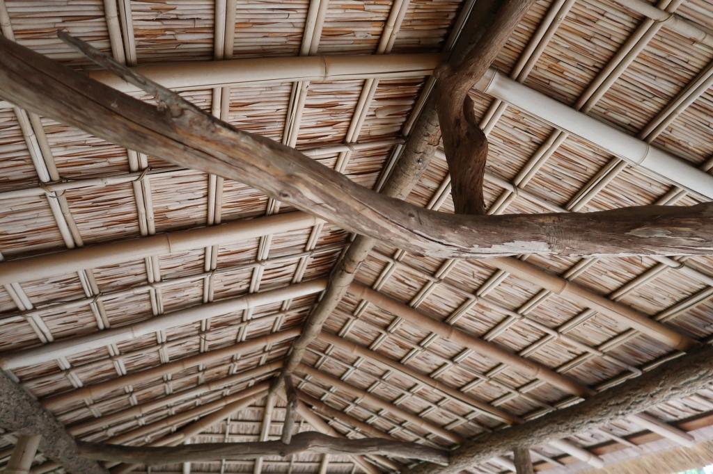 葦の天井 kyoto