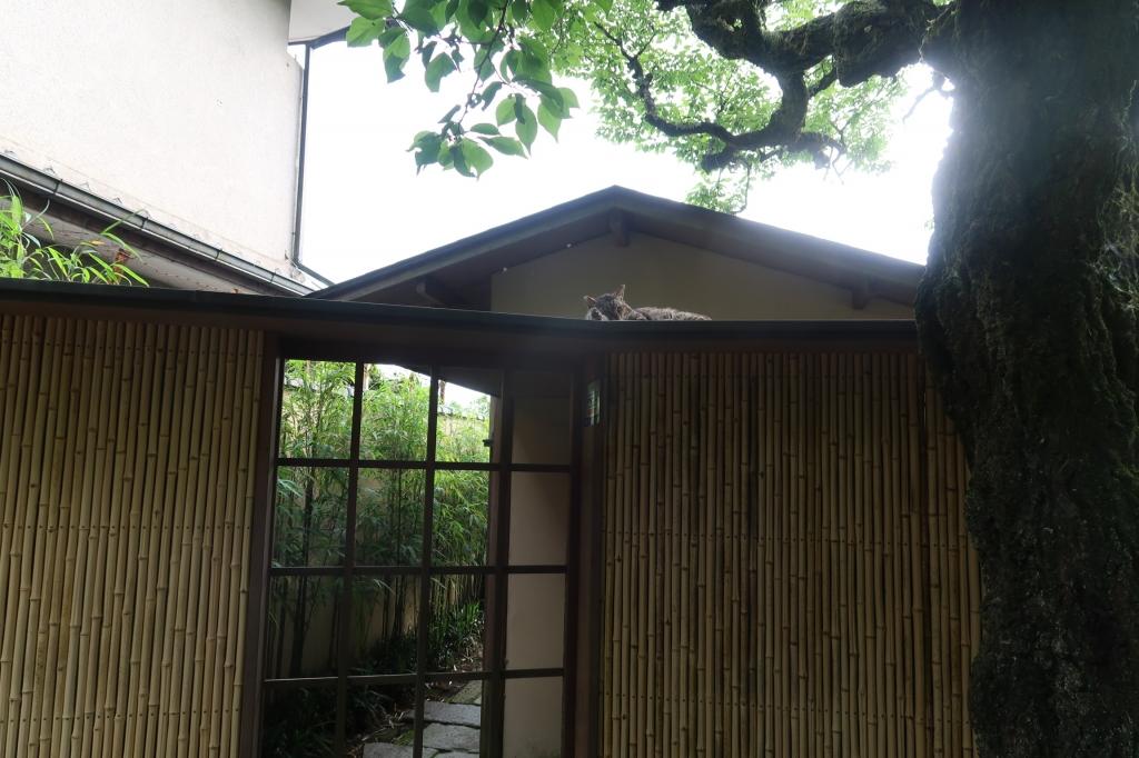 お気に入りの場所 kyoto