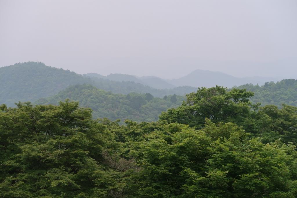 梅雨 kyoto