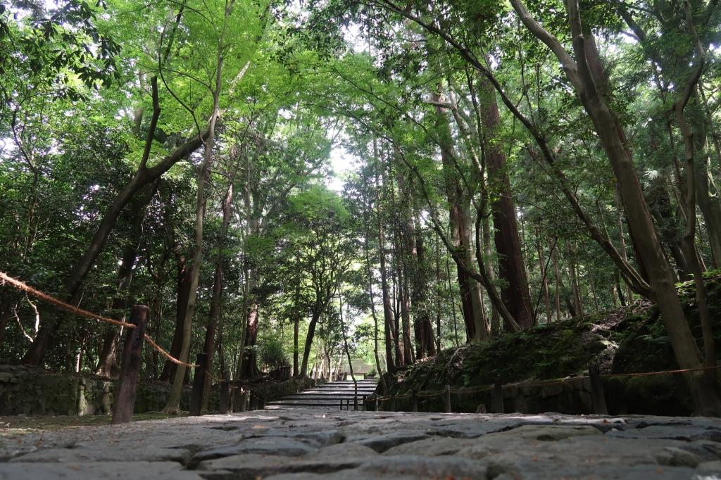 記憶の道 kyoto