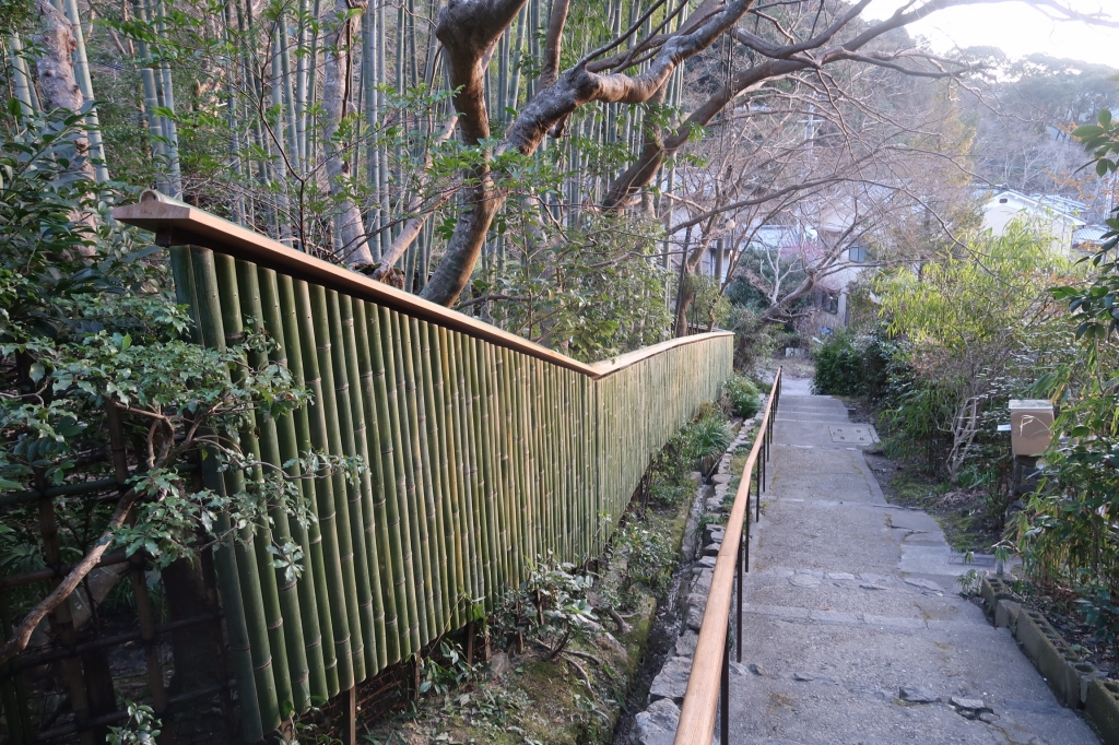 春の兆し kyoto