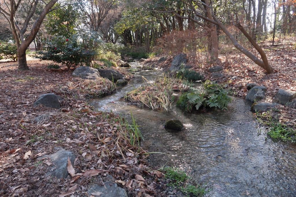 自然流 kyoto