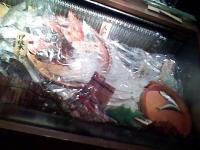 入り口の魚