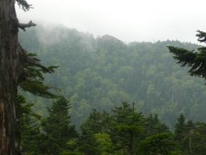 西穂山荘が見える