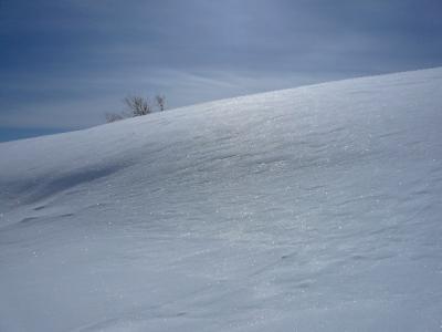 千畳敷の雪原