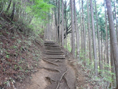 日の出山登山道