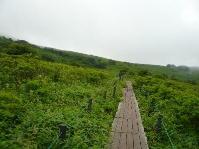 車山湿原木道