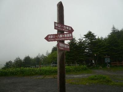ロイヤルイン前標識