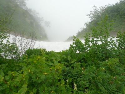 奥大日岳 裏は雪渓
