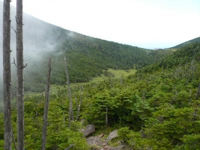 縞枯山荘への道