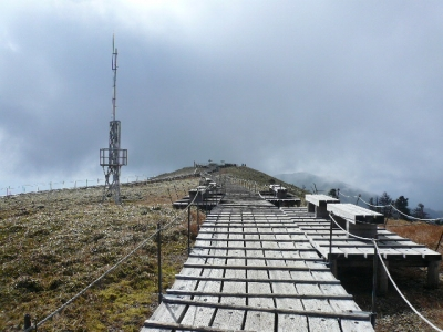 剣山山頂 付近