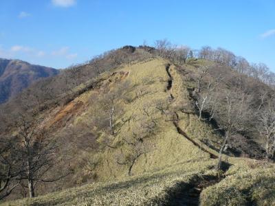 塔の岳〜丹沢山