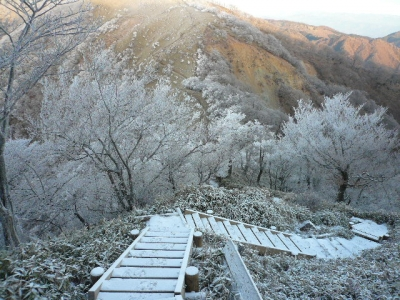 蛭ヶ岳へ向かう木道