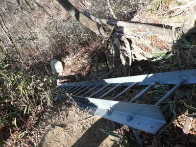 檜洞丸下山中はしご