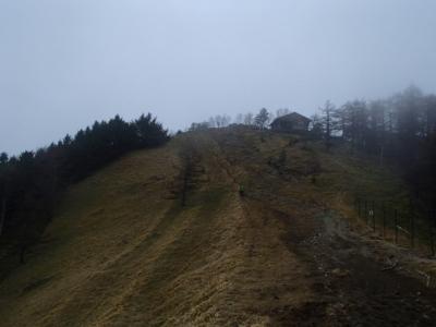 雲取山山頂へ